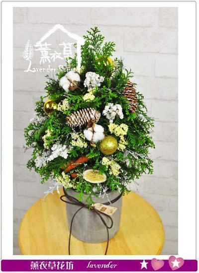 進口絲柏聖誕設計 106121212