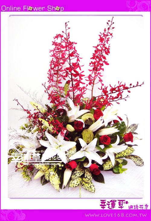 C42優質盆花