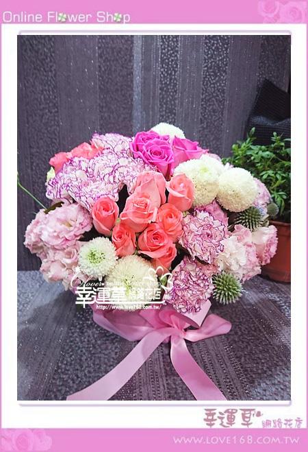 優質盆花C0404