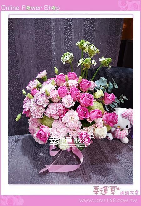 優質盆花C0409