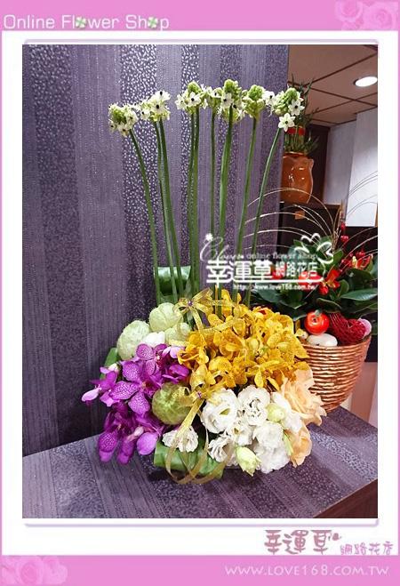 優質盆花C0402