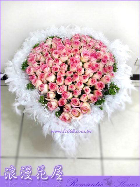 雙色玫瑰 2-60
