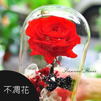不凋花,乾燥花,玻璃罩,永生花