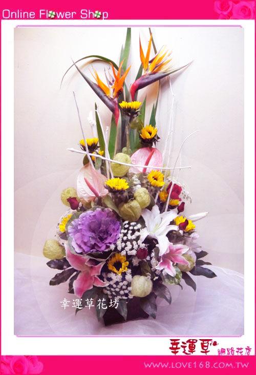 C34優質盆花