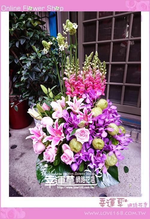 優質盆花C0101