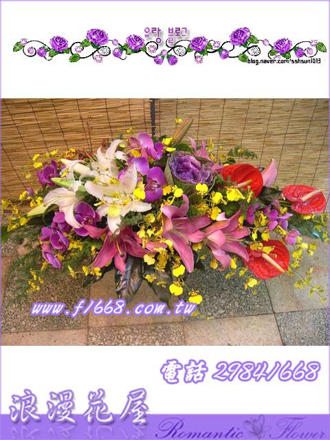 盆花F21