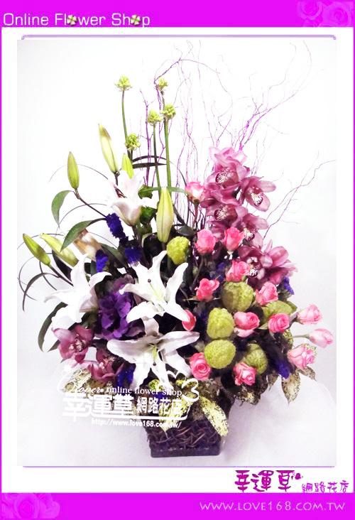 C38優質盆花