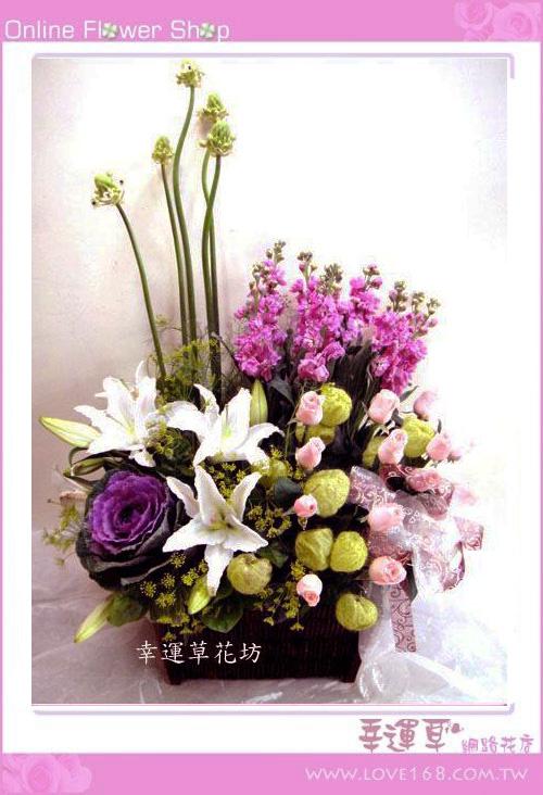 C19優質盆花