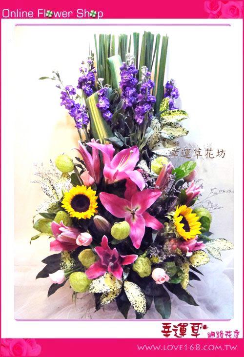 C11優質盆花