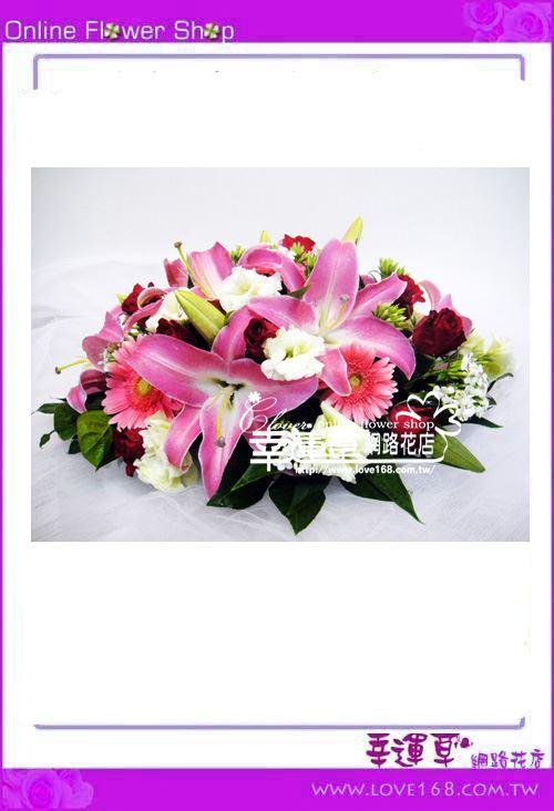 C41*優質盆花