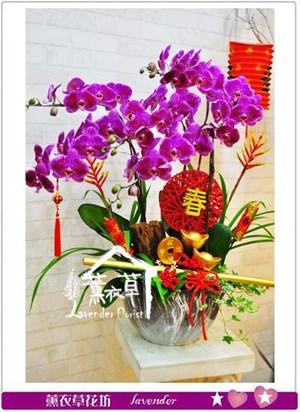 蝴蝶蘭設計106011101