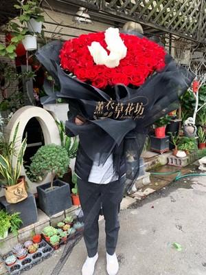 100朵玫瑰花束/求婚/告白/節日/生日/ 108021503