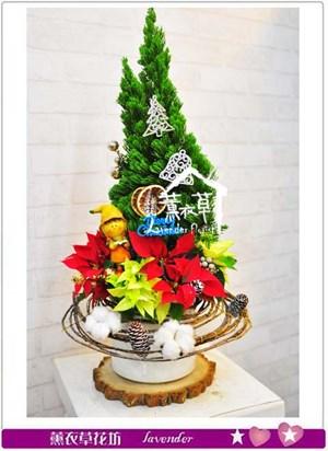 聖誕特賣B120515