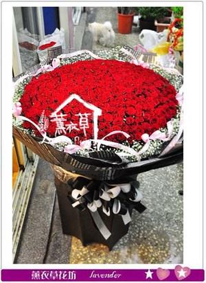 520朵玫瑰花~106051921