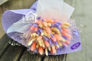 兔耳草花束~乾燥花系列106011205