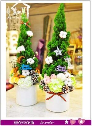 盆花設計B120209