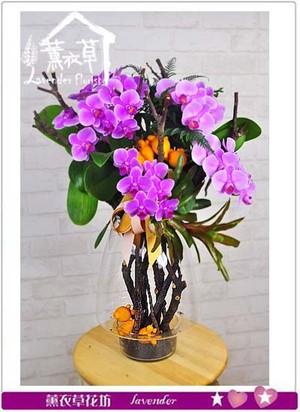 蝴蝶蘭~玻璃款 106120707