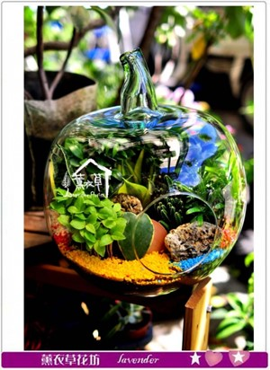 玻璃花器設計~蘋果造型c082906-缺貨中