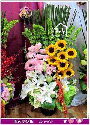 豪華盆花y435143