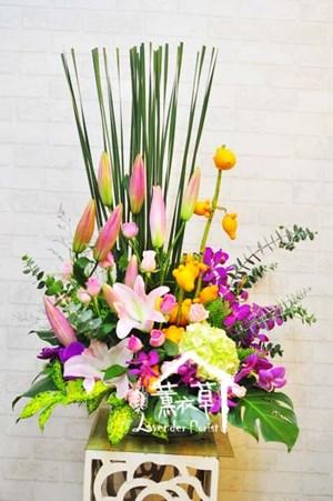 盆花B101316 .