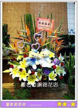 盆花設計F567