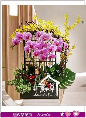 蝴蝶蘭設計 106091013