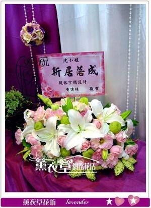 盆花設計y33522