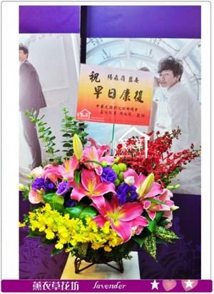 盆花設計a102704