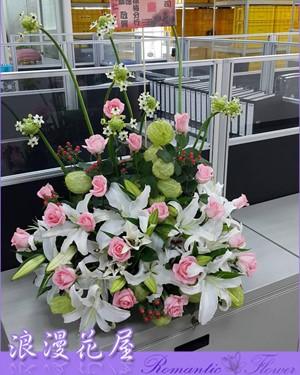 典雅盆花 F45