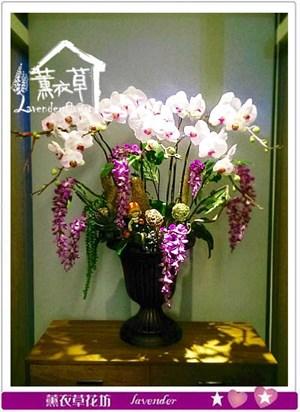 蝴蝶蘭設計 106091015