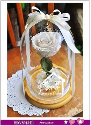 白色不凋花設計 106052601