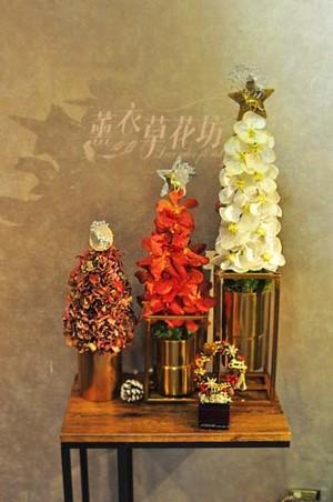 聖誕設計 107113035